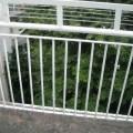 DSCN3913_thumb.JPG